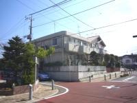 miyamae-2.JPG