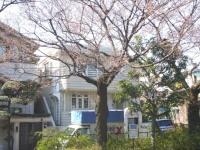 miyamae-4.JPG