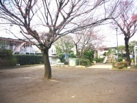 miyamae-5.jpg