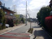miyamae-6.jpg